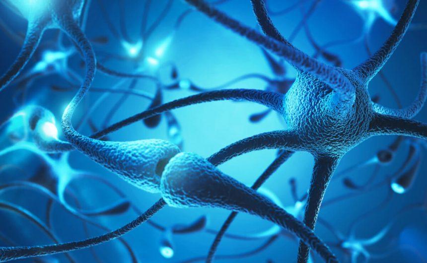 Jak zmienić nastawienie do życia, wykorzystując do tego neuroplastyczność mózgu?